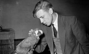 David attenborough kisses bird